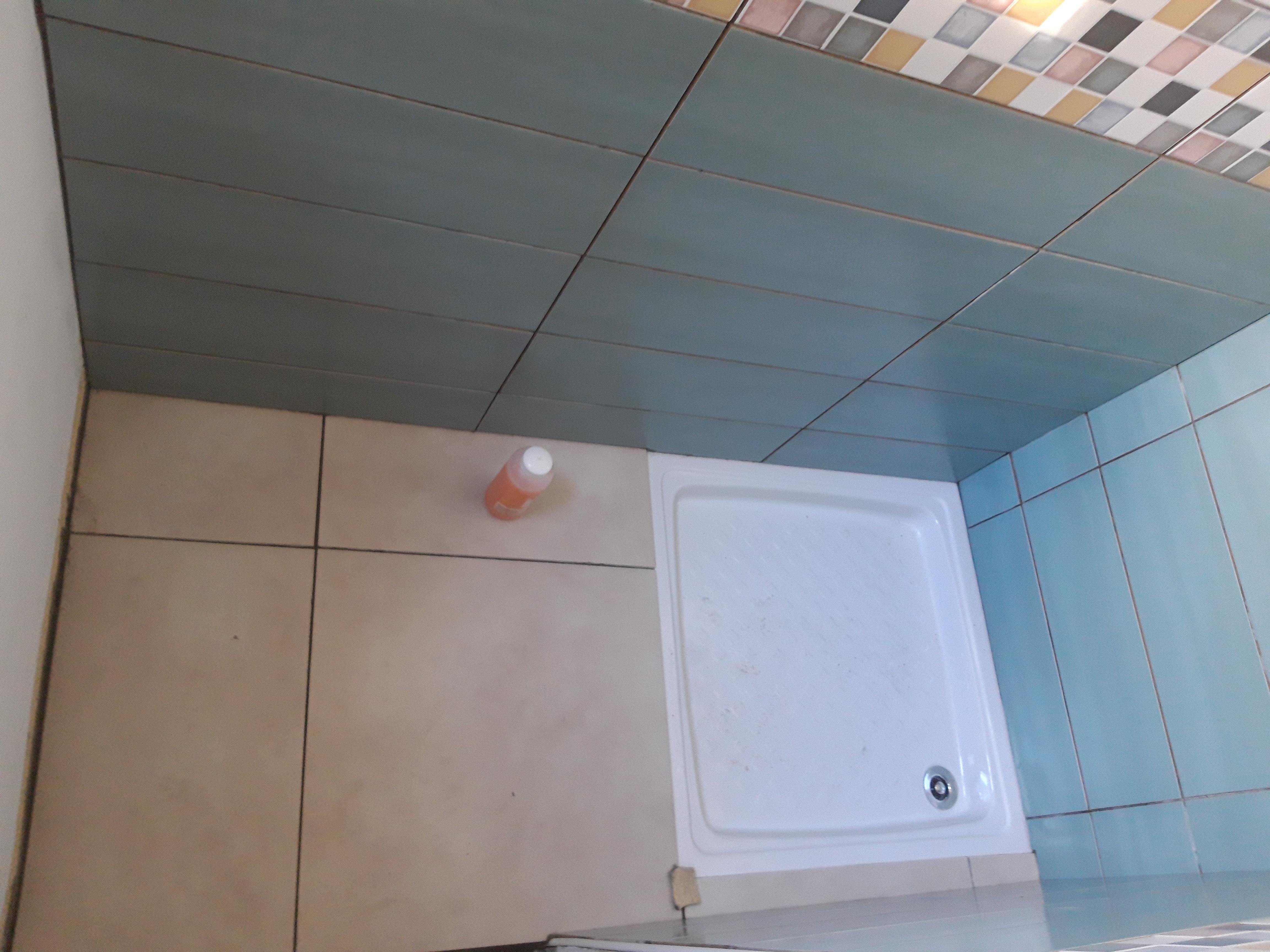 Salle de bain 1 (6)